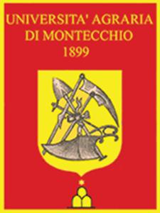 Gonfalone-rosso-bordo-oro22